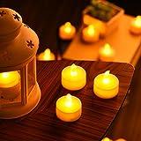 LED Kerzen, OMORC 24x LED teelicht Kerzen flammenlos, Weihnachten &Erntedankfest LED Teelichter-Kerzen, Kerze LED und perfektes Requisit für Party, Bar, Hochzeit, Festival (A-Warm Weiß) Test
