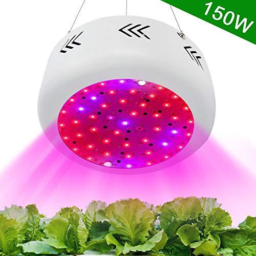 Lampe Horticole 150W UFO Led Horticole Floraison Lampe LED Eclairage pour plantes Spectre Complet Lampe de Croissance Plante de jardin d'intérieur Veg et fleur Hydroponic Greenhouse Grow tente