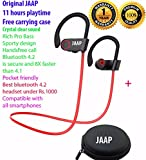 JAAP Wireless Bluetooth 4.2 Sports Earphones with mic Super Bass 10 Hours Playtime - Best Reviews Guide