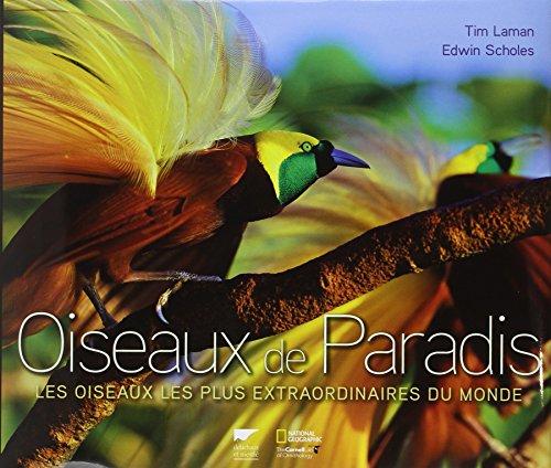 oiseaux-de-paradis-les-oiseaux-les-plus-extraordinaires-du-monde