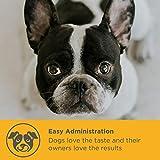 Gelenk-Ergänzungsfutter für Hunde – MaxxiFlex Plus – Hunde Gelenke – Fortschrittliche Formel – Glucosamin HCL, Chondroitin-Sulfat, MSM, Hyaluronsäure, Teufelskralle, Bromelain, Gelbwurz – Linderung Von Arthritisschmerzen – Beste Hüftunterstützung Für Hunde – Hunde-Hüftdysplasie – Alle Rassen Und Größen – 120 Hochwertige Kaubare Tabletten – Geschmacksgarantie - 5