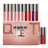 Pannow Matte Liquid Lippenstifte, 12 Farben Wasserfest Langlebig Liquid Lipstick Nude Lipgloss Set Make-up