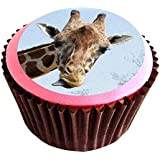 Giraffe (image2) edible cake toppers (12 of 38mm 1.5inch) #114