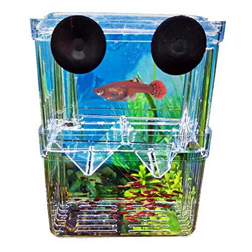 CricTeQleap Fisch-Brutplatz, Kunststoff-Fischzucht Isolation Schutzbox Tank Aquarium Fry Fish Hatchery S