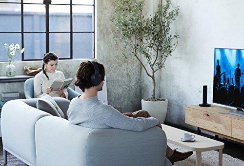 Sony MDR-RF895RK kabellose Kopfhörer (bis zu 100 Meter Reichweite, Geräuschminimierungssystem, 40-mm-Treiber, automatische Frequenzsuche, bis zu 20 Stunden Akkulaufzeit) Schwarz - 14