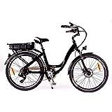 RooDog Chic Electric Bike
