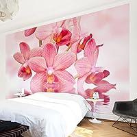Suchergebnis auf Amazon.de für: wandbild rosa orchidee - 50 - 100 ...