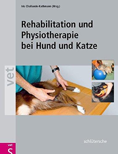 rehabilitation-und-physiotherapie-bei-hund-und-katze