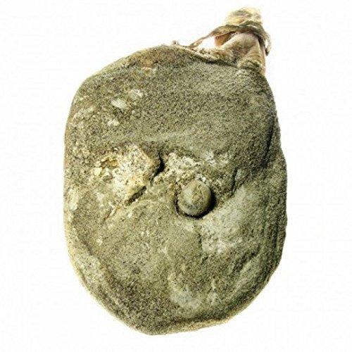 Prosciutto crudo intero umbro il baroncino 6,5 kg circa artigianale, gastronomia umbra