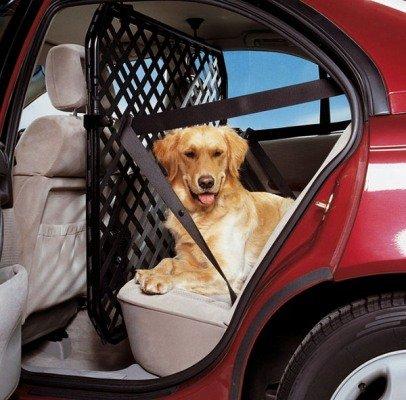 allianz-sicherheitsabtrennung-car-medium