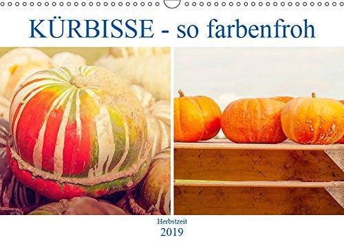 Kürbisse - so farbenfroh (Wandkalender 2019 DIN A3 quer): Speisekürbisse, Ölkürbisse und Zierkürbisse (Monatskalender, 14 Seiten ) (CALVENDO Lifestyle) (2 Halloween Film 2019)