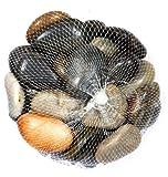 Unbekannt Deko-Steine im Netz - bunt - 1 kg - Zierkiesel/Natursteine - Verschiedene Körnungen (10-40 mm)