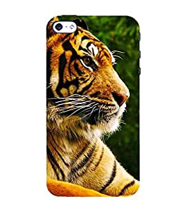 Fiobs Designer Back Case Cover for Apple iPhone 5S (Tiger Face Orange yellow wild )