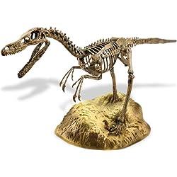 Elenco Velociraptor Skeleton Model Kit