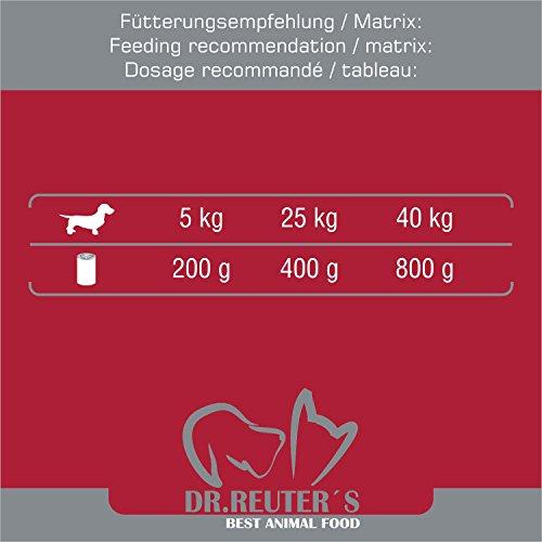 Dr. Reuter's Hundefutter Rind mit Haferflocken und Möhrchen, 6er Pack (6 x 400 g) - 6