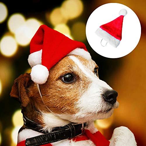QinMM Decoraciones navideñas para 2019 Mascotas Navidad Sombrero Perro Gato Gorra de Felpa Perrito