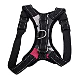 SRI High Quality Front Range Dog Harness No-Pull Pet Harness Adjustable Outdoor Pet