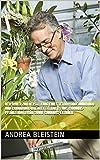 Verfahren zur Herstellung eines Tetrahydrocannabinol- und Cannabinol-haltigen Extraktes aus Cannabis-Pflanzenmaterial sowie Cannabis-Extrakte