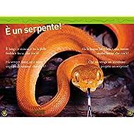 Serpenti-Livello-3-Ediz-illustrata