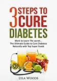 Diabetes: Diabetes Diet: 3 Steps to Cure Diabetes The Ultimate Guide with the Top Foods to Restoring Blood Sugar (diabetes, diet, how, weight, sugar) (diabetes,diabetes ... diabetic cookbook, diabetes burnout Book 1)