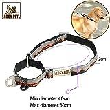LOSY PET Hundehalsband Nylon, Hunde Halsband mit Haltegriff, Sicherheitsverschluss weich Verstellbare Halsband für mittlere/große Hunde - M
