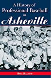 A History of Professional Baseball in Asheville (Sports) by Bill Ballew (2007-02-28)