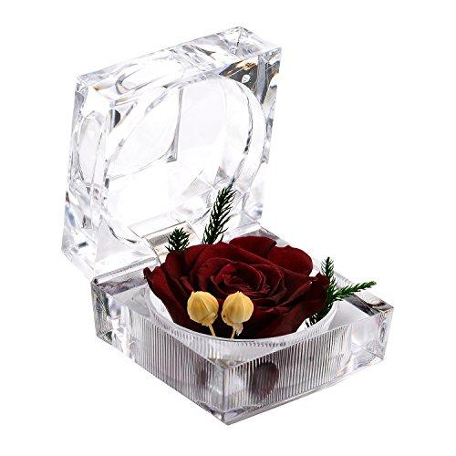 A-szcxtop, fiore fresco conservato, fiore mai appassito, fiore che dura in eterno, fiori eterni con confezione ad anello in cristallo, regalo per san valentino e matrimonio deep wine