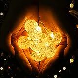 Viixm Catena Luminosa 6.5M Luci da Esterno Catena di Lampadina con 30 LED, Lucine Led Decorative a Batteria, Catene Luminose per Feste, Giardino, Natale, Halloween, Matrimonio