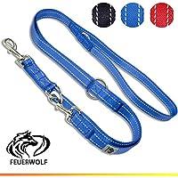 [Gesponsert]FEUERWOLF Hundeleine 3-Fach Längenverstellbar - Doppelleine - Für Mittlere und Große Hunde - Robust und Stabil - Beidseitig Reflektierend - 2,2 Meter Lang - Blau