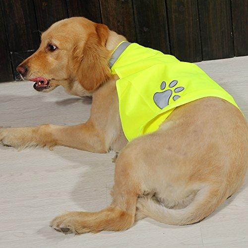 Hunde-Warnweste High Viz Reflektorweste - Sicherheitsweste Für Große Hunde