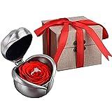 Fiore Conservato, Kapmore Conservato Red Rose Fiore Regalo per San Valentino, Anniversario,...