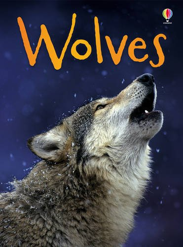 BEG Wolves (Beginners Series)