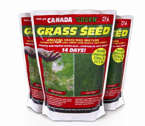canada-green-grass-seed-500-grams