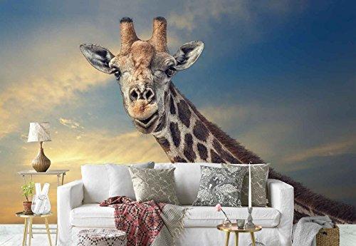 Vlies Fototapete Fotomural - Wandbild - Tapete - Giraffe Kopf Langer Hals Makro - Thema Tiere - XL - 368cm x 254cm (BxH) - 4 Teilig - Gedrückt auf 130gsm Vlies - 1X-378271V8 (Hals Tier)