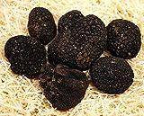 100 Gram Schwarze italienische Trüffeln(Tuber Uncinatum) .1-2 Tage Expresszustellung