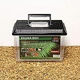 Fauna-Box medium 30x20x20cm, Deckel schwarz