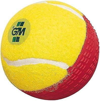 Gunn & Moore Swing King pelota de críquet