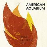Songtexte von American Aquarium - Burn.Flicker.Die.