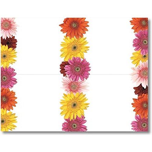 Gerbera Daisies 4-up Postkarten-40Stück - 60 Lb Papier
