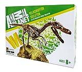 Velociraptor Skelett Bausatz 24 Teile von Animal Planet