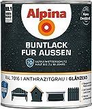 Alpina Buntlack für Außen Anthrazitgrau glänzend 750 ml
