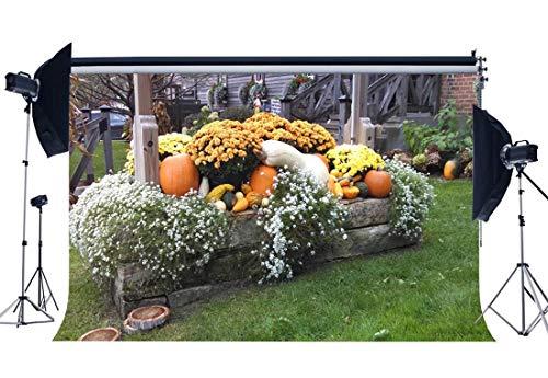 BuEnn Happy Thanksgiving Day Backdrop 9X6FT Vinyl Halloween Kürbisse Kulissen Frische Chrysantheme Ländlichen Hof Grün Gras Wiese Fotografie Hintergrund für Herbst Ernte Fotostudio Requisiten QB35