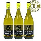Weißwein New Zealand Fernway Sauvignon Blanc trocken (3x0,75l)
