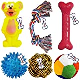 Petlicious & More Squeaky Rope, Ball Chew Teether Toys for Dog, Puppy (Multicolour)-Combo of 6
