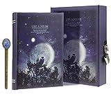 LY, Like a dream, diario segreto, modello: chiaro di luna, taccuino per appunti e disegni, con lucchetto, 288 pagine, con custodia, formato A6 Misura unica Purple, Owl
