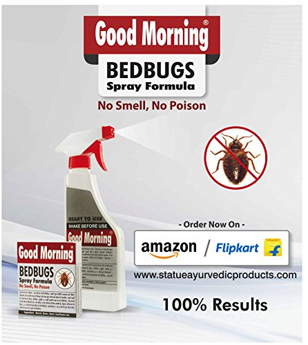 Good Morning Bed Bug Killer Spray Concentrate Pack Of 3 Clickonway