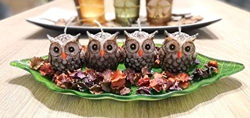 Handbemalte Kerzen – 4er-Set eulenförmige Kerzen – Handbemaltes Kerzenset aus organischem Palmwachs – Dekoration – Ungiftig und geruchslos – Mit Glasschale
