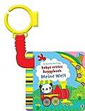 Babys erstes Buggybuch: Meine Welt: ab 1 Monat