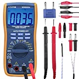 ETEPON Digitales Multimeter True RMS 6000 Automatischer Raging-Spannungsprüfer (WH5000A)
