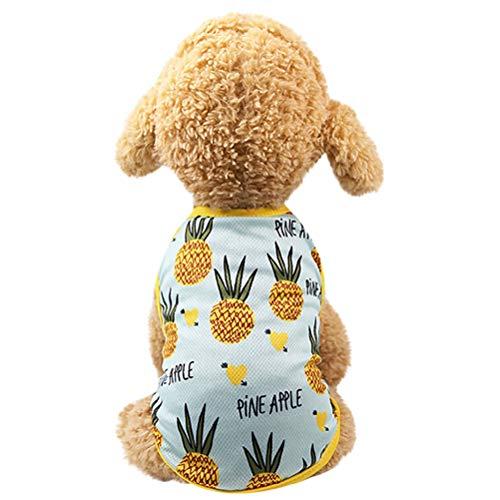 Hund Kleidung Hund Kleid Obst Muster Rock Kostüm bequem und atmungsaktiv Puppy Cat ()